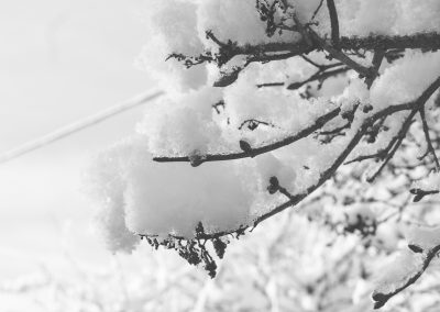 Snow December10