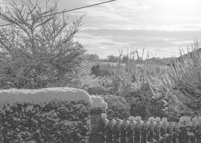 Snow December11