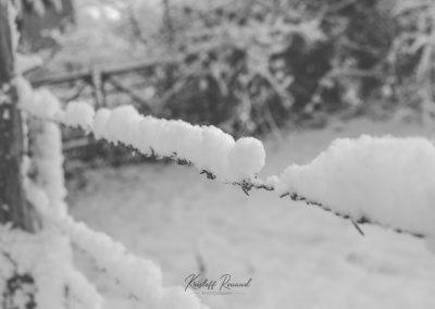 Snow December17