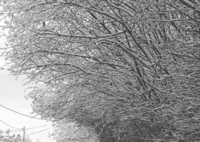 Snow December18