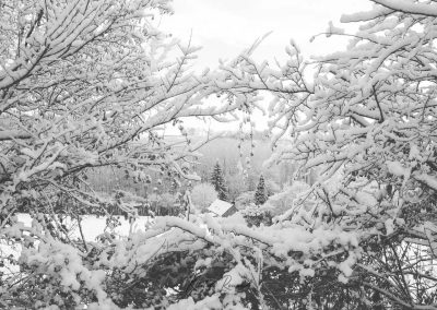 Snow December21