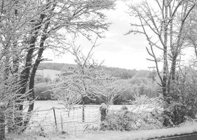 Snow December28