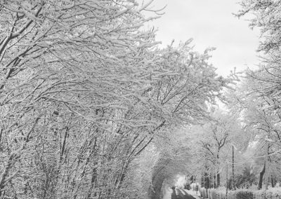 Snow December31