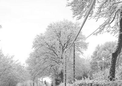 Snow December33