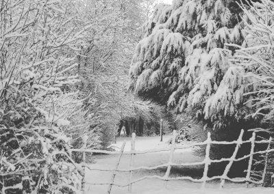 Snow December41