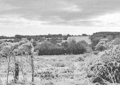 Snow December43