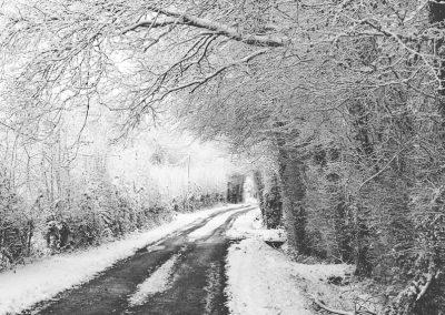 Snow December47