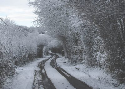 Snow December48