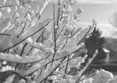 Snow December5