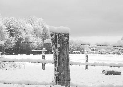 Snow December54