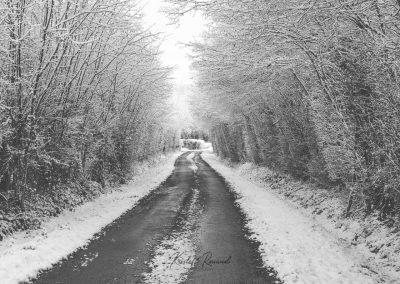 Snow December55