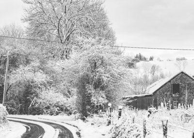 Snow December56