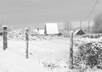 Snow December57