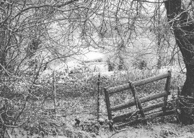 Snow December58