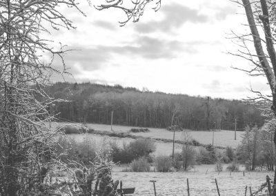 Snow December59
