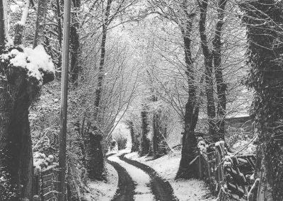 Snow December60