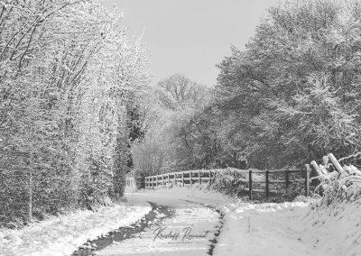 Snow December65