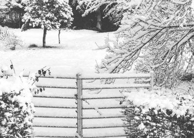 Snow December74