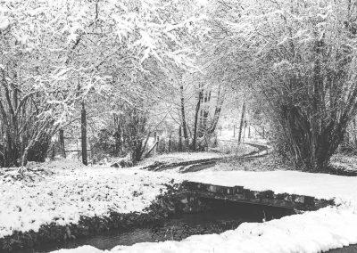 Snow December75
