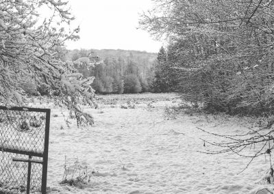 Snow December77
