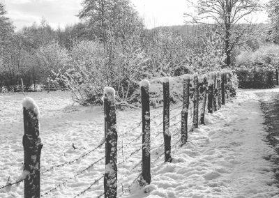 Snow December79