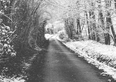 Snow December81