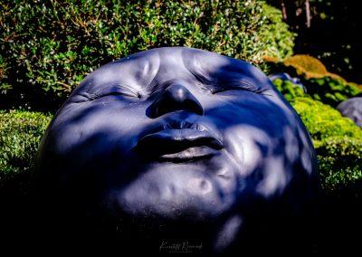 -4- Jardin d'etretat-020919-4