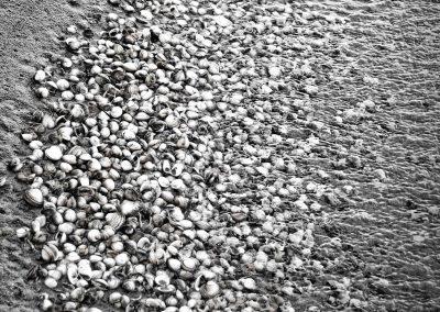 -5- Beauguillot Beach-20