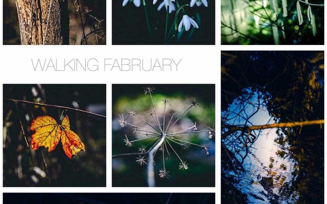 Walking Fabruary