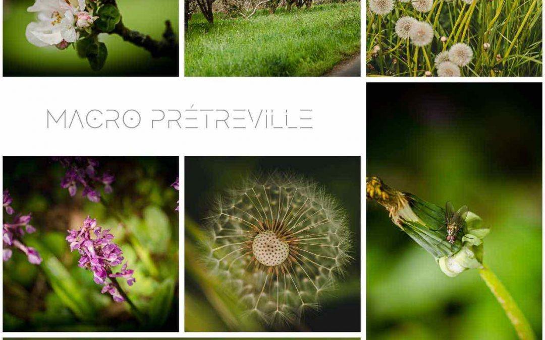 Macro Prétreville
