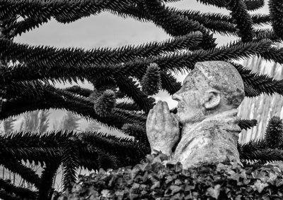 Honfleur-december-191219-21