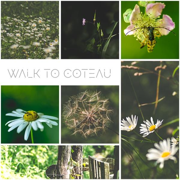 Walk Coteau